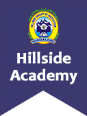 Hillside Nursing College